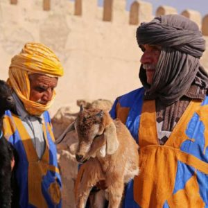 Meet goat herders holding their goats on your Morocco tour