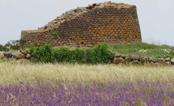 Sardinia-nuraghe-with-purple-flowers