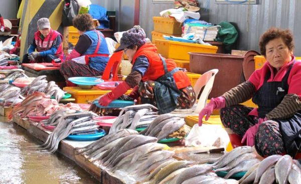 South-Korea-fish-market-ladies-selling-fish