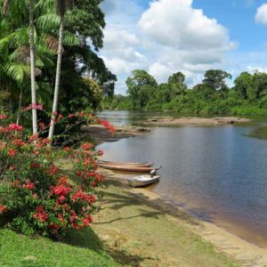 Guyana tours tropical paradise