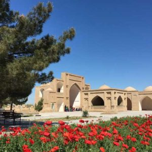Red poppies line path up mausoleum in the ancient city of Merv - Stans Tour