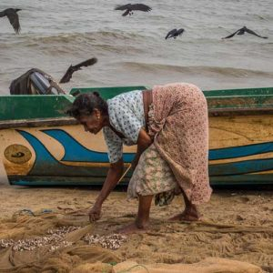 Lady sorting out the day's catch from her fishing net