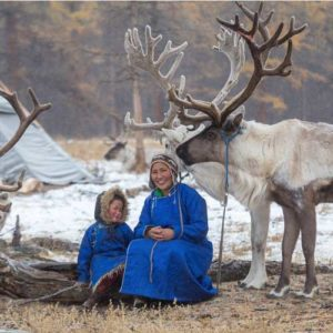 Reindeer with local lady and her son