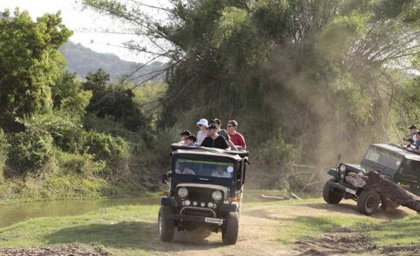 Sri-Lanka-family-on-safari