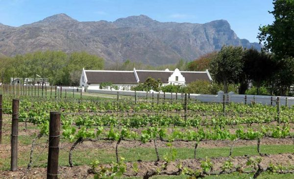 South-Africa-Cape-Town-winelands