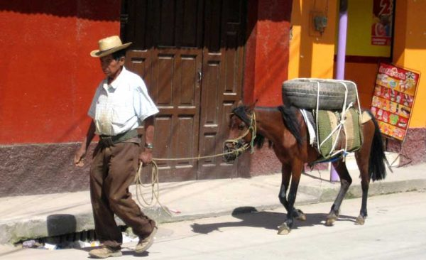 Guatemala-local-with-horse