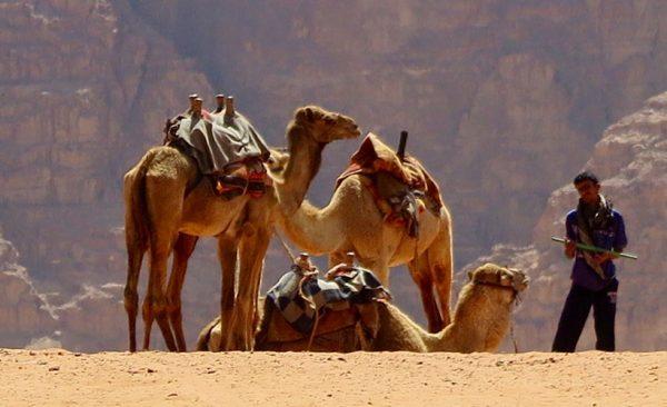 Jordan-Wadi-Rum-camel-herder