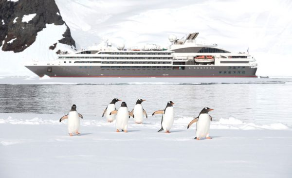 Antarctica Gentoo Penguins and ship