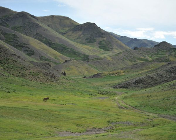 Gobi-Yolin-Am-valley-Mongolia