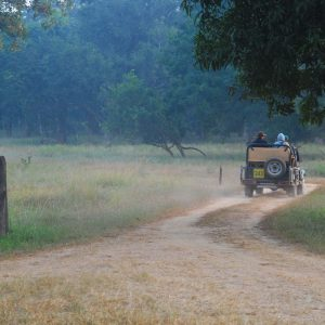 Safari outing Kanha National Park