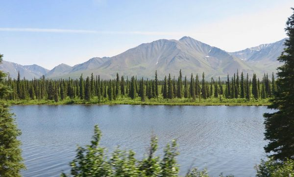 Landscape-from-train-Alaska