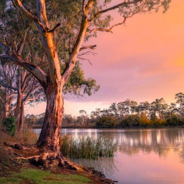 Australia | New Zealand