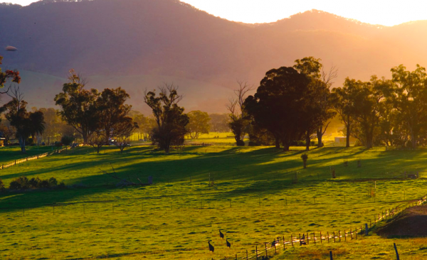 Mudgee-hills-at-sunrise