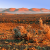 Gawler ranges South Australia