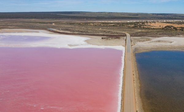 The Pink Salt Lake Macdonnell in South Australia