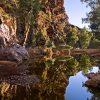 Wilderness walk near Arkaroola